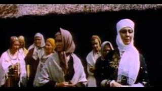 Pūt vejini (1973)