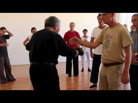 Tai Chi Punches by Grandmaster William C. C. Chen