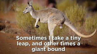 modern major kangaroos but every time a noun is spoken it gets faster
