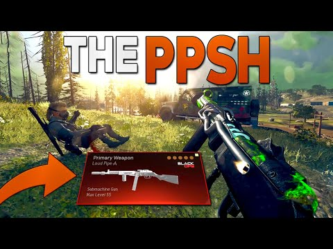 Is the PPSh-41 the BEST SMG in Warzone?!