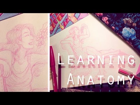 3 Techniques for Learning Anatomy!