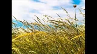 Tiefenentspannung - Stress abbauen - Hypnose - Meditation
