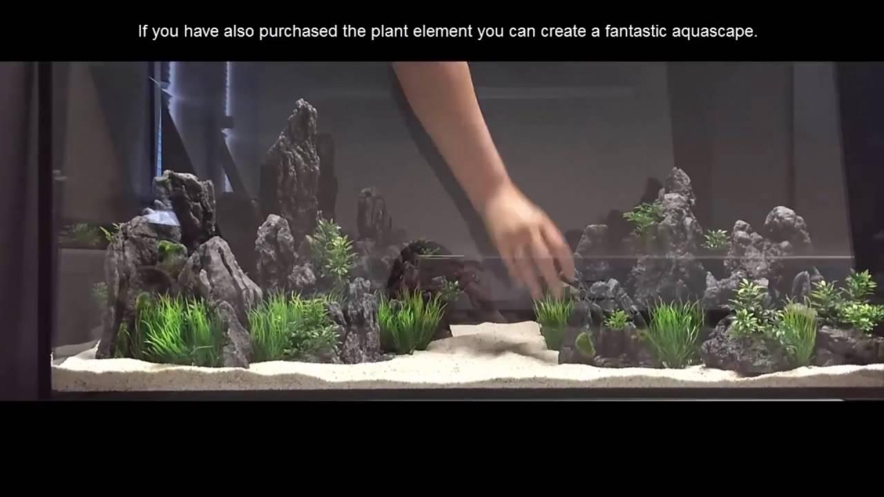 Hugo Kamishi Aquascape 6 Kit Youtube