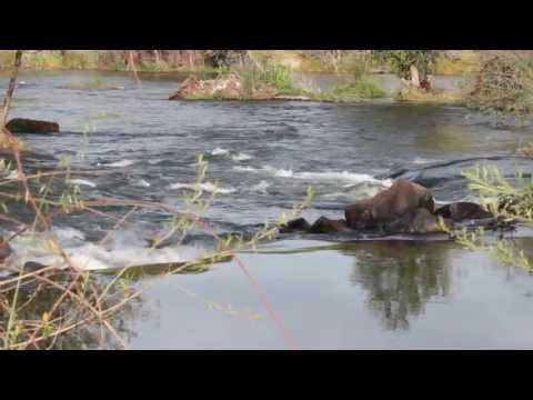 San Joaquin River Valley  Travel and Ag Tourism