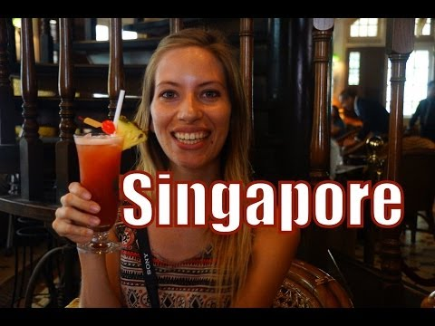 Visit Singapore Travel Guide