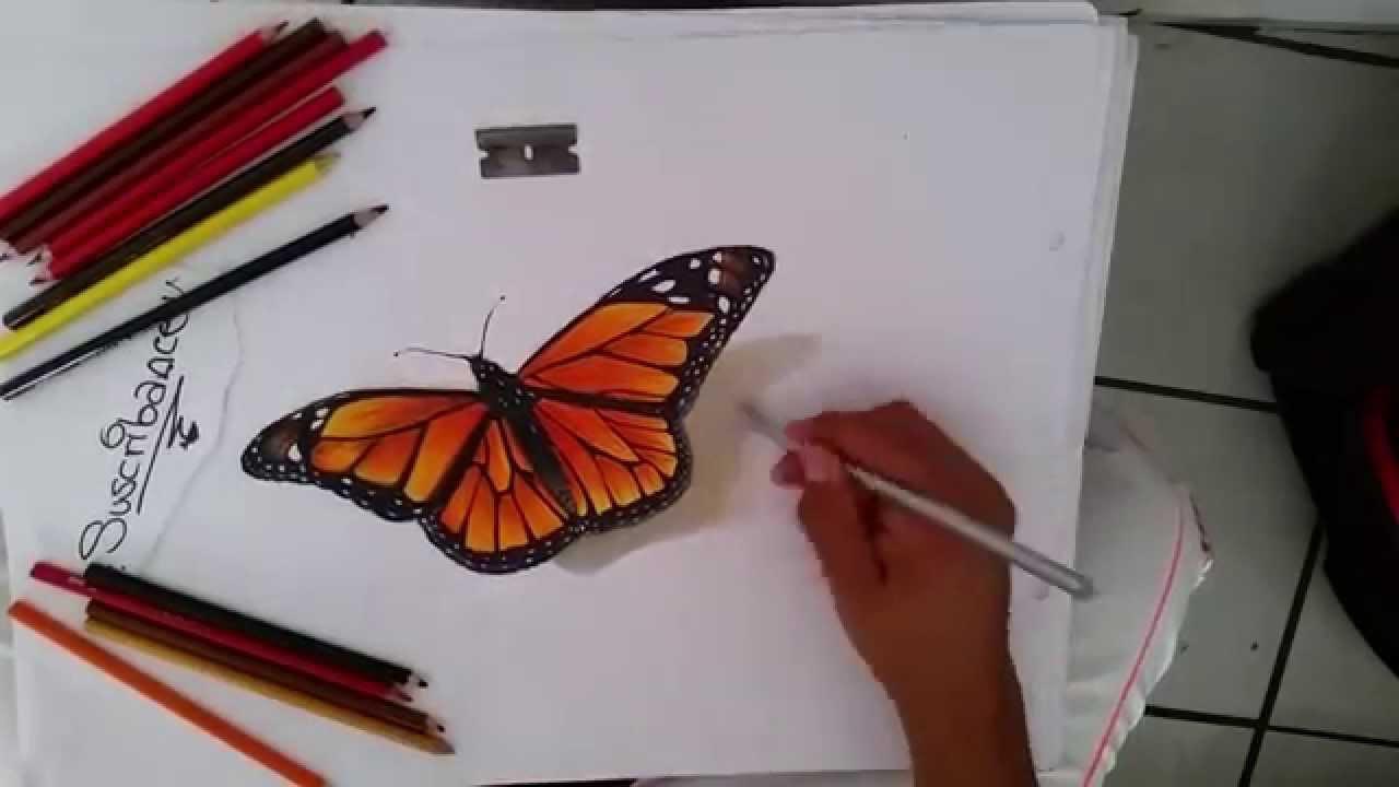 Como Dibujar Una Mariposa Monarca En 3d Youtube
