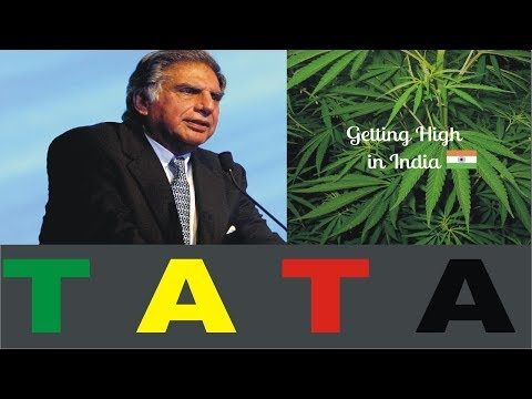 Ratan Tata Investing in Cannabis Research In India
