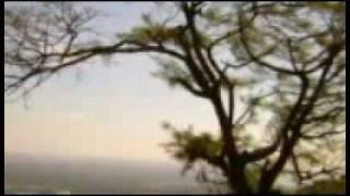 Karimizhi Kuruviye - Malayalam Song in Flute