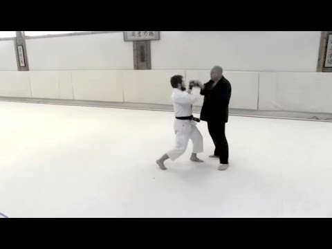 Aikido Self Defense With Striking Forms
