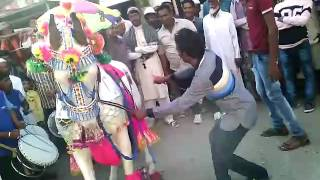 vuclip Horse dance video Hamid bhai ghode wale 9826811390