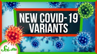 How the New COVID Variants Change Things | SciShow News