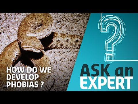 How Do We Develop Fears and Phobias? | Ask an Expert