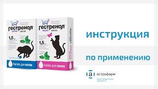 Гестренол капли для кошек и котов. Инструкция по применению