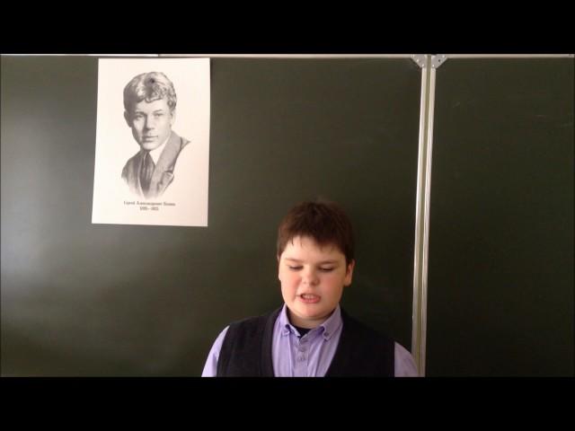 Изображение предпросмотра прочтения – ДаниилБогозин читает произведение «Я покинул родимый дом…» С.А.Есенина