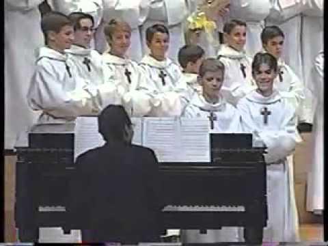 Cat Duet - Boys Choir - MEOW!!!!!