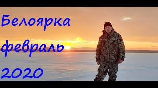 Зимняя рыбалка 2020 Рыб сегодня бастует Рыбалка на жерлицы Рыбалка на Белоярском водохранилище
