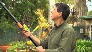 The Garden Gurus - Fiskars Tree Pruner