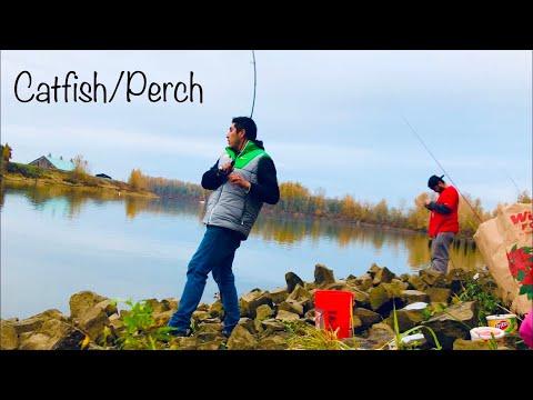 Oregon Fishing | Catfish/perch/bass