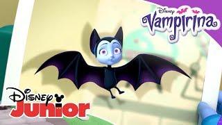 Vampirina: Top 5 - Los mejores momentos de murciélago   Disney Junior Oficial