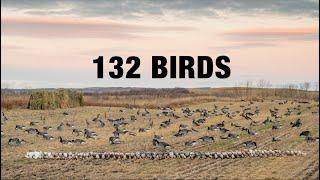 INSANE Dry Field Combo Hunt!! (Mallards, Pintails, Wigeon, Canadas, Snows, Specks)