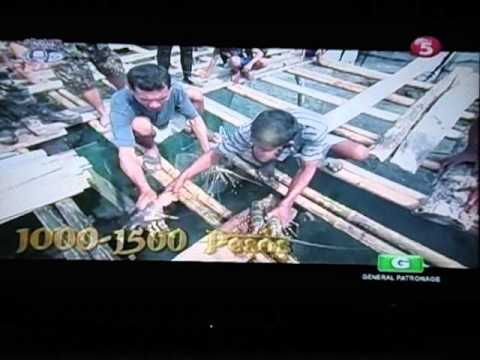 Pinoy Explorer Jolo Sulu Part2Segment1