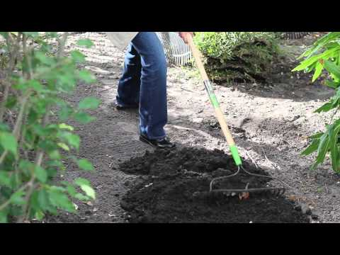 How to Lay Sod Over Tree Roots : Sod & Topsoil