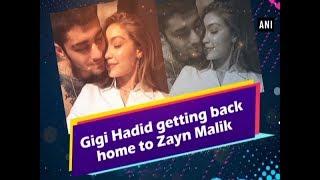 Baixar Gigi Hadid getting back home to Zayn Malik - #Hollywood News