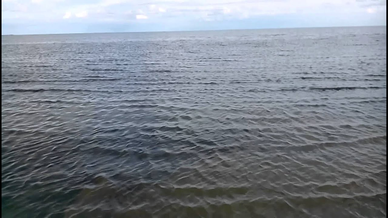 кулундинское озеро фото