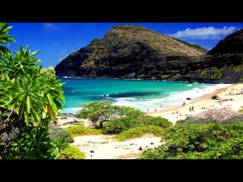 Hawaiian Music | Tropical Hawaiian Drums | Relaxing Tropical Music