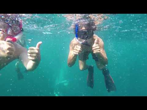 BALI: Surfing and diving