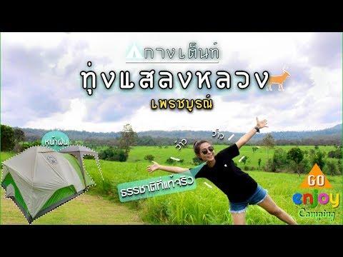 Enjoy Camping : กางเต็นท์ ทุ่งแสลงหลวง เพรชบูรณ์ ทุ่งหญ้าสะวันนาเมืองไทย ธรรมชาติที่แท้จริง หน้าฝน
