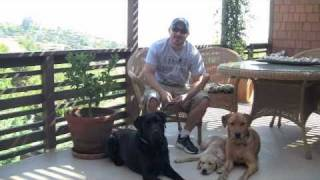 Puppy In Training Tv - Ep3 - Guide Dog Puppy Sitters