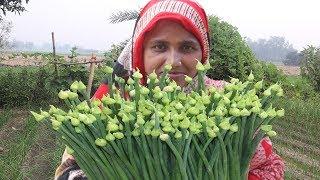 Peyaz Fuler Ful Puli Pitha Recipe Spring Onion Harvesting FARM FRESH Onion Flower Curry Village Food
