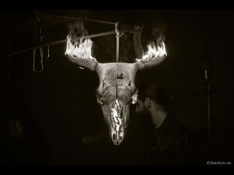 Bobaflex - A Spider In The Dark - Official Music Video
