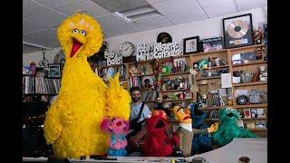 Sesame Street: NPR Music Tiny Desk Concert