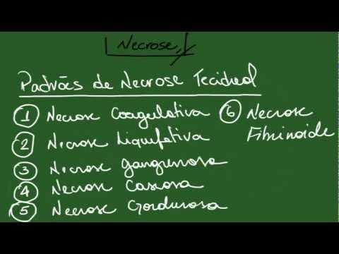 necrose,-apoptose,-pigmentações-e-calcificações---resumo---patologia-geral