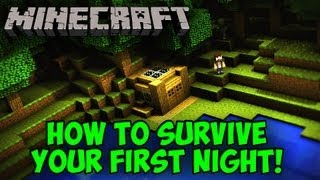 Minecraft: How To Survive Your First Night