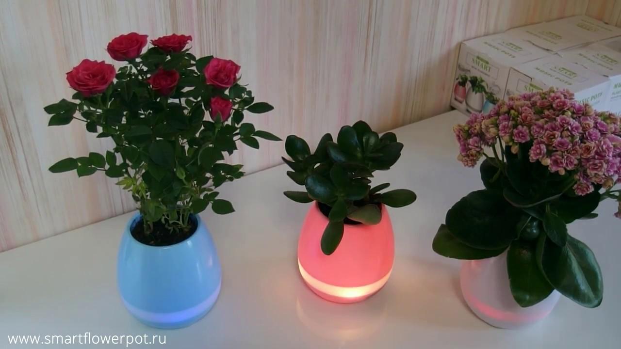 Пластиковые, керамические горшки и вазоны для цветов. Приветствуем вас в интернет-магазине gorshki. Kiev. Ua!. У нас вы можете удобно и надежно.