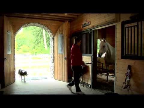 Barn Pros Olympic 48 Gable Barn Youtube