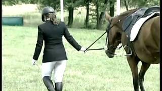 Moja pasja sa konie