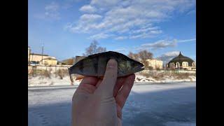 окунь весной со льда рыбалка на Упе в Туле