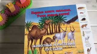 ОбзорКниги 👉 Животные и растения пустыни - Первые книги малыша Учим новые слова - изд Улыбка