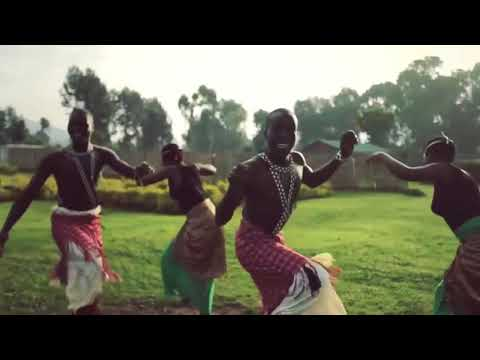 Habesha Tour and Travel Agency in Rwanda