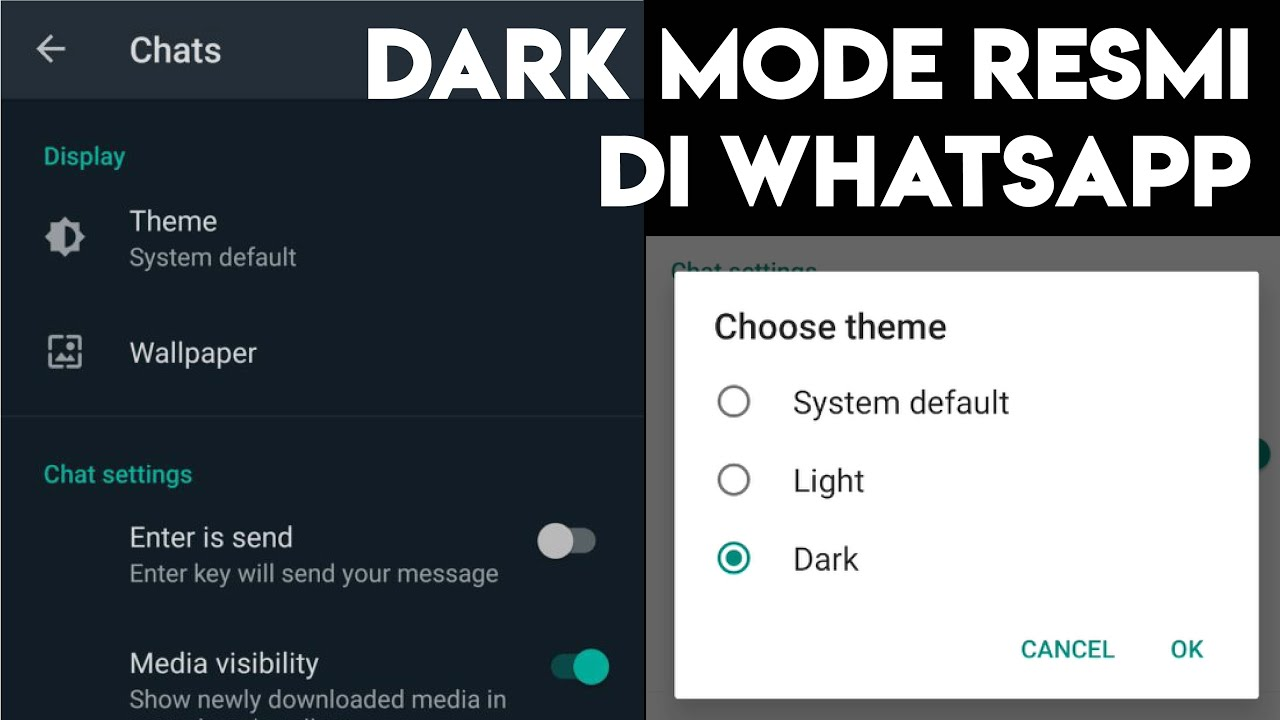 Cara Bikin Dark Mode Whatsapp Youtube