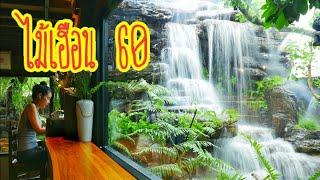 ร้านกาแฟที่สวยที่สุด ปี2019ไม้เฮือน 60