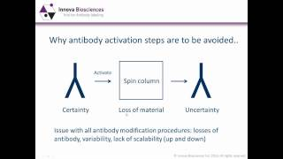 Antibody conjugation methods - which one is best for you?