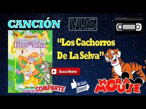 Opening Los Cachorros Del Libro De La Selva Youtube