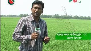 Reduce  Rice yield gap.mpg