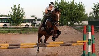 Конкур, ошибки прыжков на лошади или что говорят девушки, когда они в седле