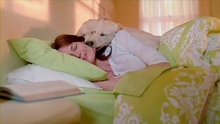 Dogs waking up their owners – Funny and cute dog compilation
